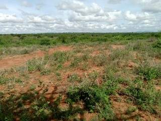 OFFER OFFER JUJA FARM PRIME PLOTS @ 350K WITH READY TITLE DEEDS